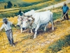 Trejus metus Jonas dirbo su gyvuliais Moljos ūkyje.